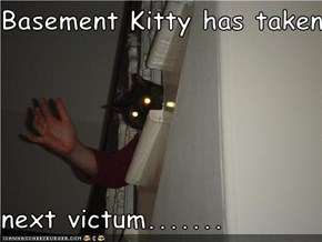 Basement Kitty has taken  next victum.......