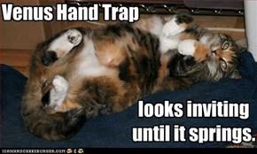 Venus Hand Trap