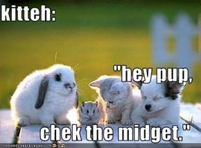 "kitteh: ""hey pup, chek the midget."""