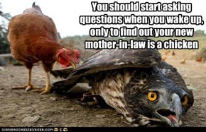 You should start asking questions when you wake up, only to find out your new mother-in-law is a chicken