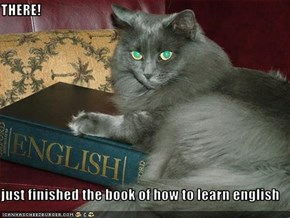 THERE!  just finished the book of how to learn english