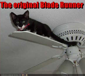 The original Blade Runner