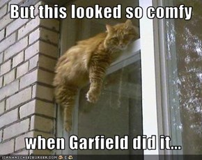 But this looked so comfy      when Garfield did it...