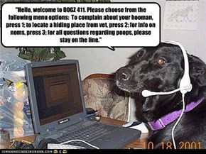 """Hello, welcome to DOGZ 411. Please choose from the following menu options:  To complain about your hooman, press 1; to locate a hiding place from vet, press 2; for info on noms, press 3; for all questions regarding poops, please stay on the line."""