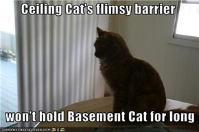 Ceiling Cat's flimsy barrier      won't hold Basement Cat for long