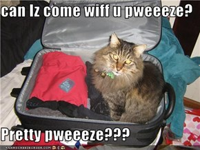 can Iz come wiff u pweeeze?  Pretty pweeeze???