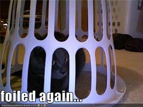 foiled again...