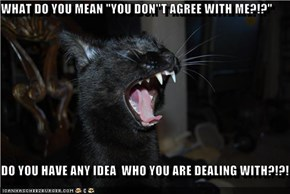 "WHAT DO YOU MEAN ""YOU DON''T AGREE WITH ME?!?""  DO YOU HAVE ANY IDEA  WHO YOU ARE DEALING WITH?!?!"