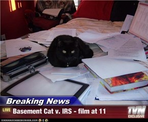 Breaking News - Basement Cat v. IRS - film at 11