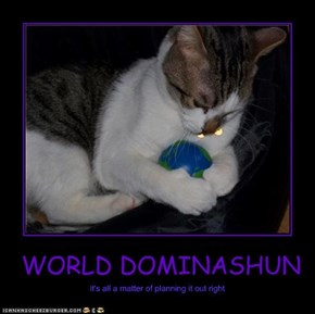 WORLD DOMINASHUN