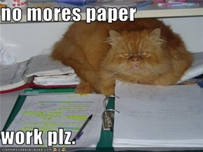 no mores paper  work plz.