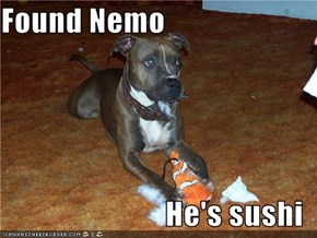 Found Nemo  He's sushi