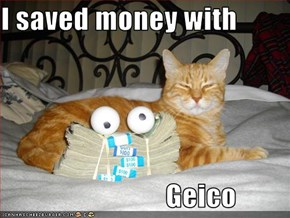 I saved money with                                Geico