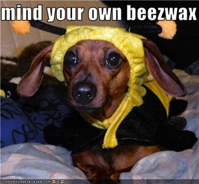 mind your own beezwax