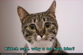 kitteh sad. why u no hug him?