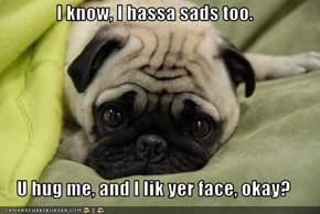 I know, I hassa sads too.  U hug me, and I lik yer face, okay?
