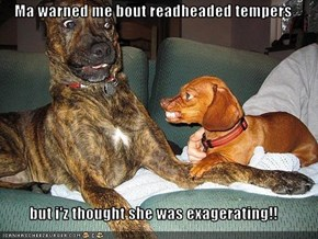 Ma warned me bout readheaded tempers  but i'z thought she was exagerating!!