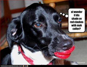 ai wunder if dis shade ov red clashes with mah coller?