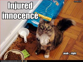 Injured innocence