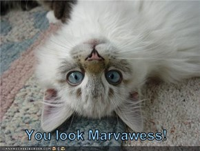 You look Marvawess!