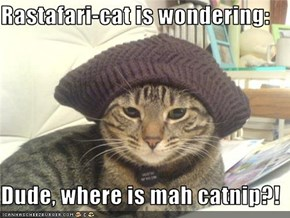 Rastafari-cat is wondering:  Dude, where is mah catnip?!