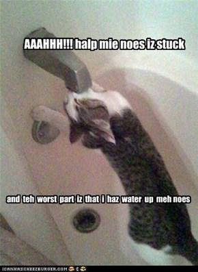 mie noes iz stuck
