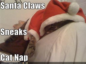 Santa Claws  Sneaks  Cat Nap