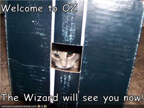 Welcome to OZ  The Wizard will see you now!