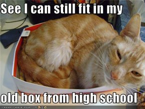See I can still fit in my  old box from high school