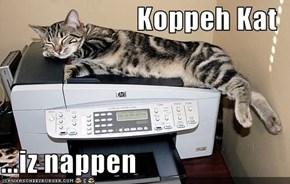 Koppeh Kat  ...iz nappen
