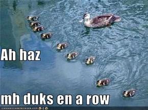 Ah haz mh duks en a row