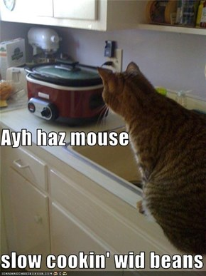 Ayh haz mouse slow cookin' wid beans