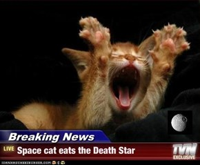 Breaking News - Space cat eats the Death Star