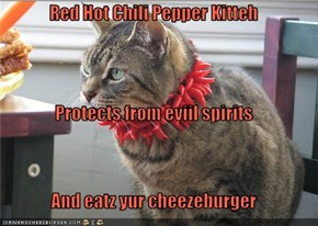 Red Hot Chili Pepper Kitteh Protects from eviil spirits And eatz yur cheezeburger