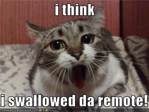 i think   i swallowed da remote!
