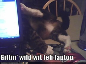 Gittin' wild wit teh laptop.