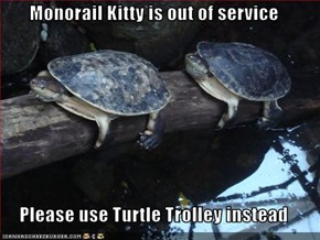 Monorail Kitty is out of service  Please use Turtle Trolley instead