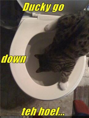 Ducky go down teh hoel...