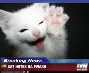 Breaking News - KAT HATES DA FWASH