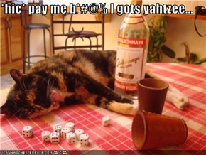 *hic* pay me b*#@% I gots yahtzee...