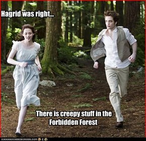 There is creepy stuff in the Forbidden Forest