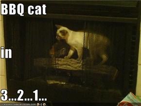 BBQ cat in 3...2...1...
