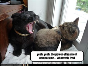 yeah, yeah, the power of basment compels me...  whateveh, fred