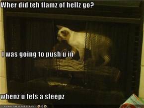 Wher did teh flamz of hellz go?  I was going to push u in  whenz u fels a sleepz