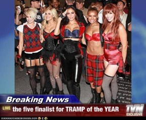 Breaking News - the five finalist for TRAMP of the YEAR