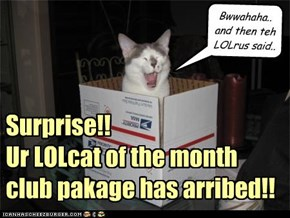 Surprise!! Ur LOLcat of the month club pakage has arribed!!