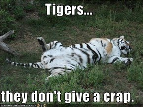 Tigers...  they don't give a crap.