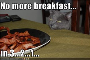No more breakfast...  in 3...2...1...