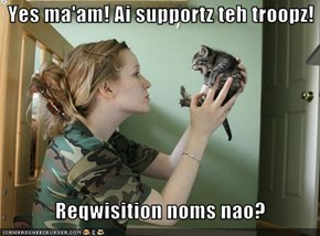 Yes ma'am! Ai supportz teh troopz!     Reqwisition noms nao?