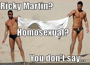 Ricky Martin? Homosexual? You don't say...